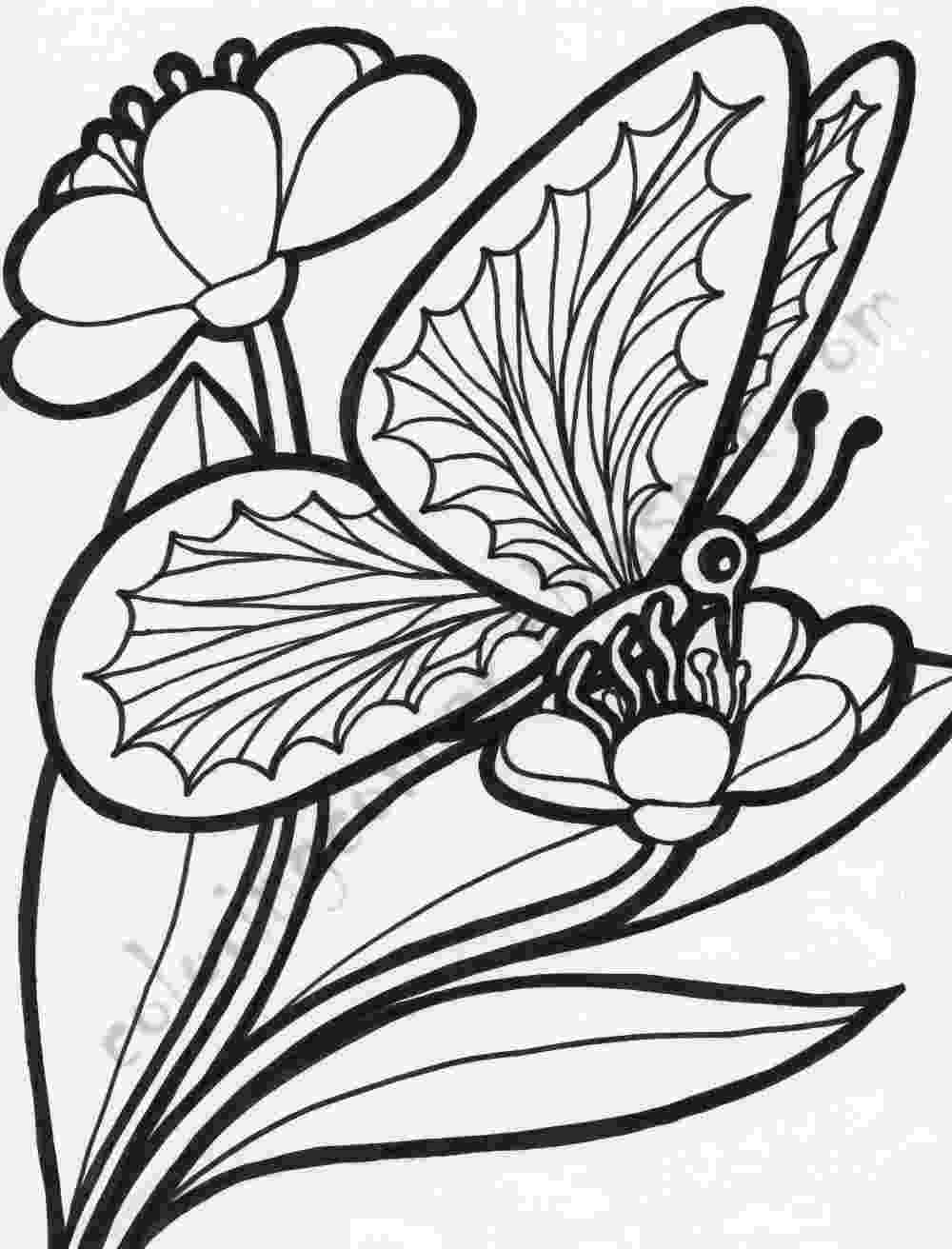 butterfly and flower coloring pages butterflies on flowers coloring page free printable butterfly coloring flower pages and