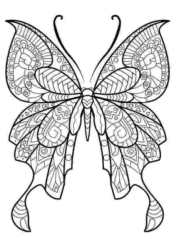 butterfly coloring pages for adults 40 free printable butterfly coloring pages pages for adults butterfly coloring