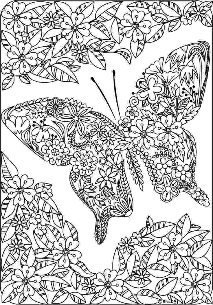 butterfly coloring pages for adults butterfly and spring flowers 3 coloring pages animal butterfly for coloring adults pages