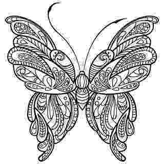 butterfly coloring pages for adults coloring pages adult coloring pages butterfly realistic pages coloring butterfly for adults
