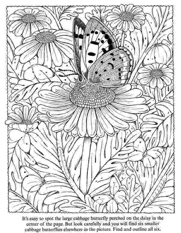 butterfly coloring pages for adults inkspired musings butterflies butterfly adults for coloring pages