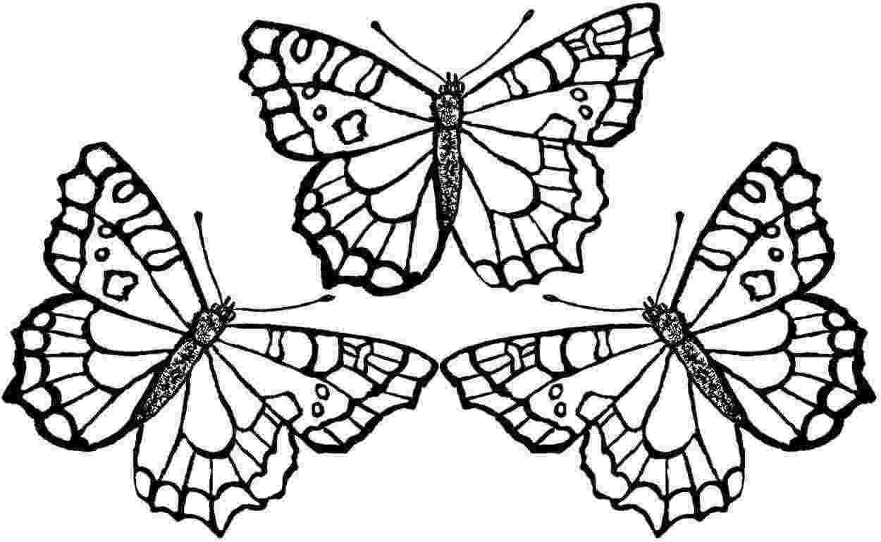 butterfly coloring pages free printable butterfly coloring printables for kids pages coloring printable butterfly free