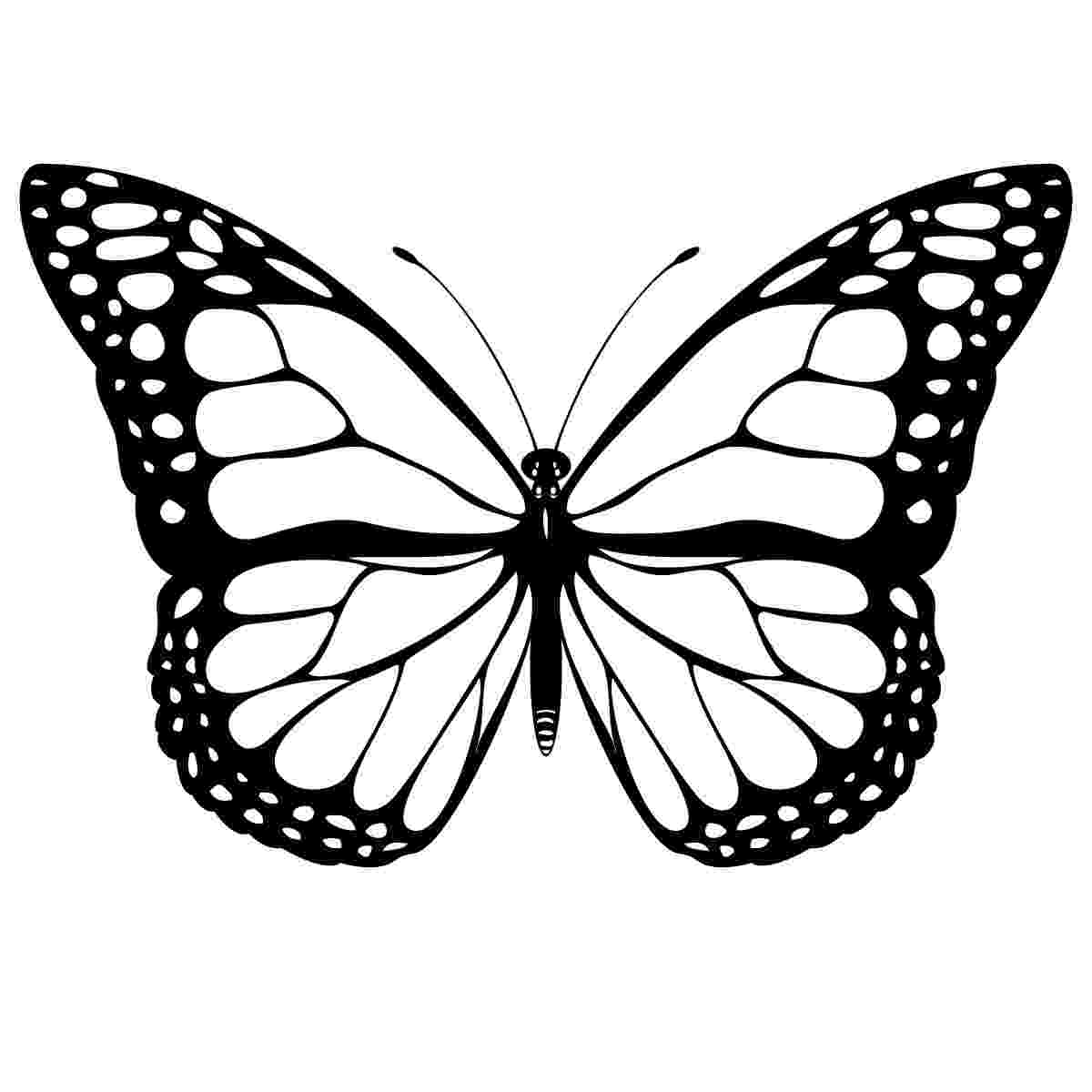 butterfly coloring pages free printable free printable butterfly coloring pages for kids butterfly pages coloring free printable