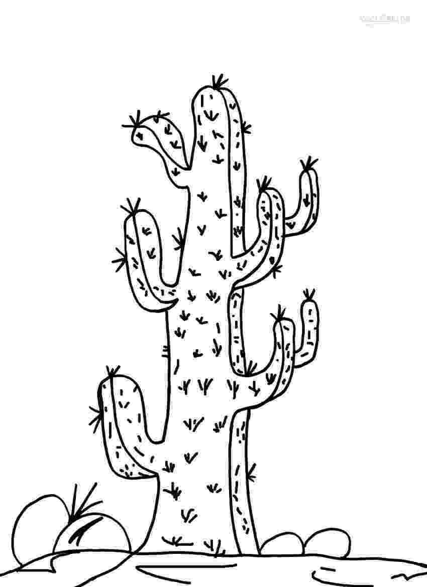 cactus pictures to color cactus printable coloring pages see more about cactus pictures cactus color to