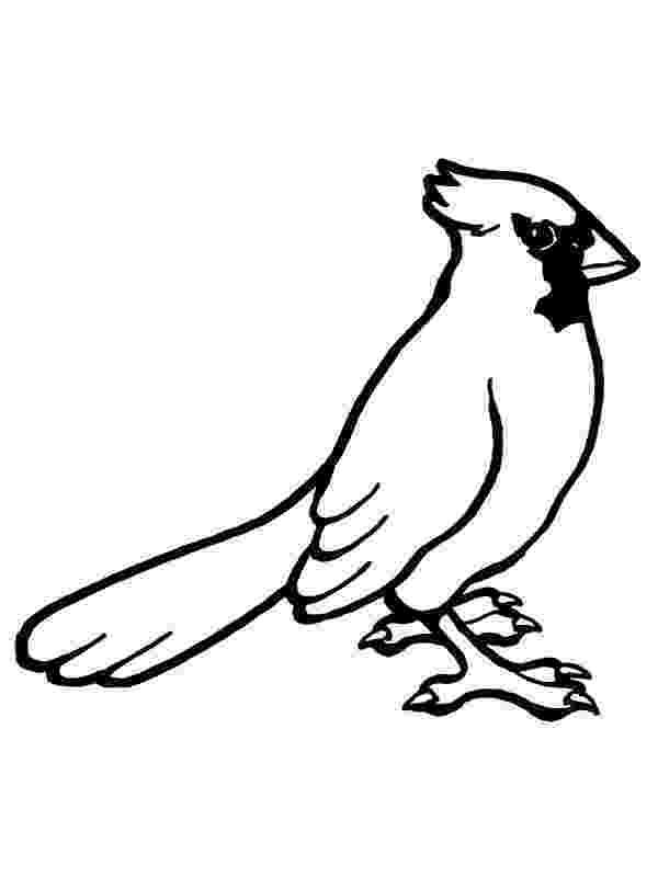 cardinal bird coloring page cardinal coloring pages getcoloringpagescom cardinal page coloring bird