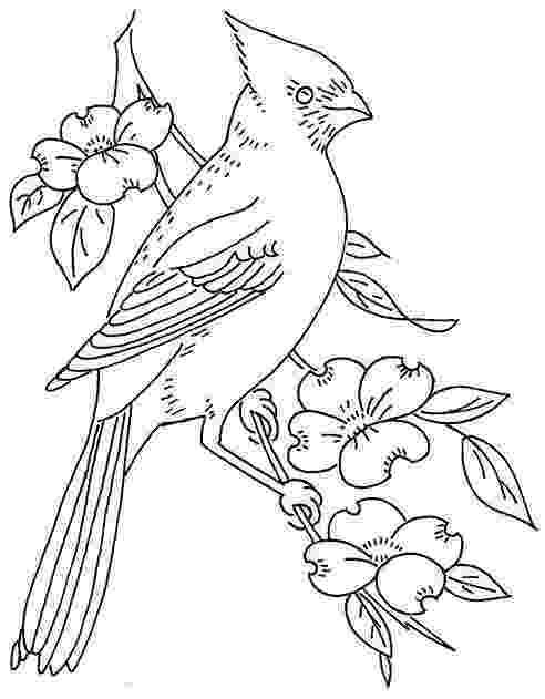 cardinal bird coloring page cardinal coloring pages getcoloringpagescom page coloring cardinal bird