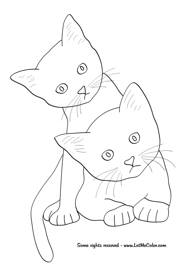 cat and kitten coloring pages animals letmecolor pages cat kitten and coloring