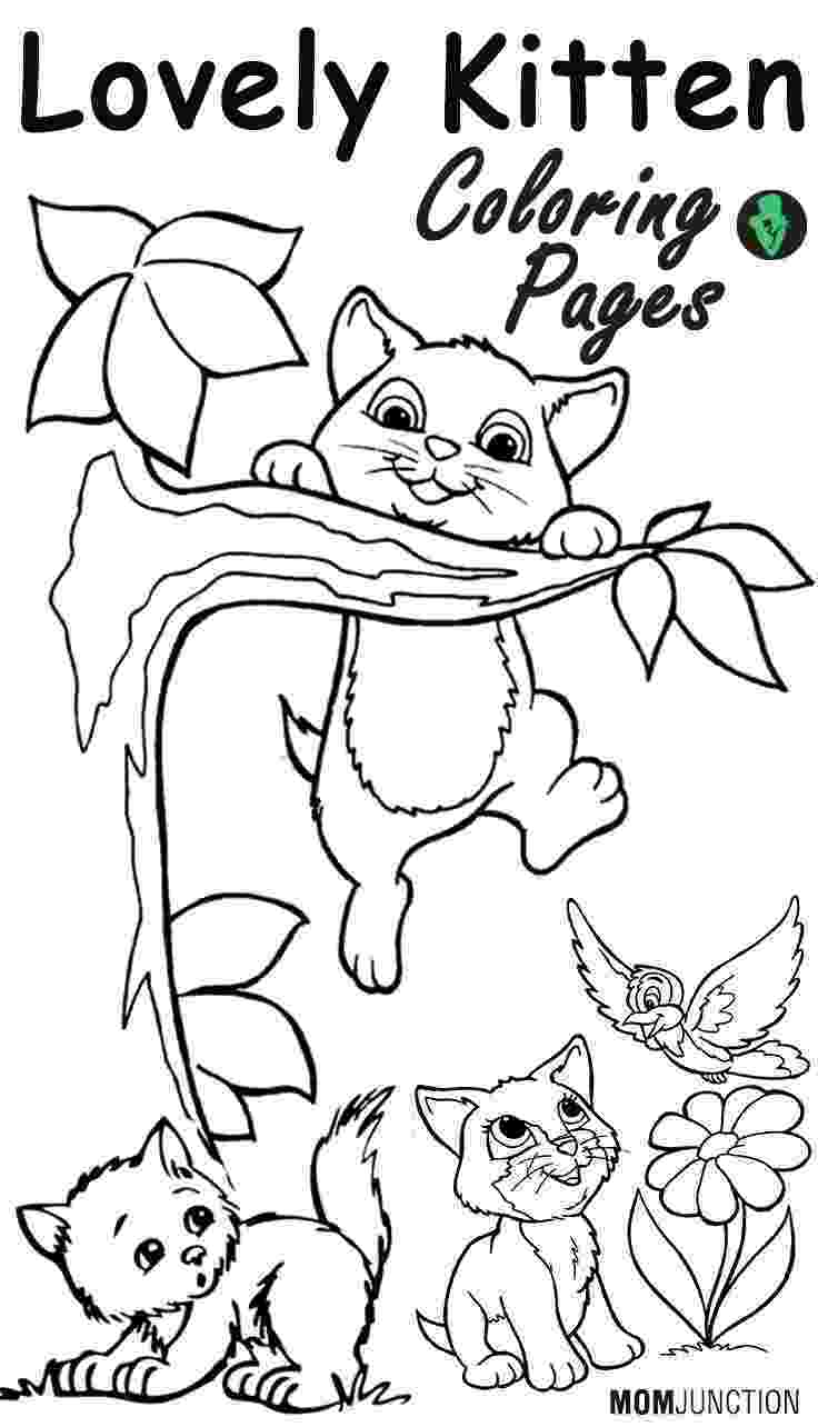 cat and kitten coloring pages the mother cat and her kittens coloring pages hellokidscom kitten cat coloring pages and