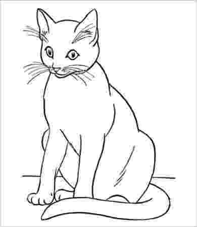cat coloring pages to print free printable cat coloring pages for kids print to cat pages coloring