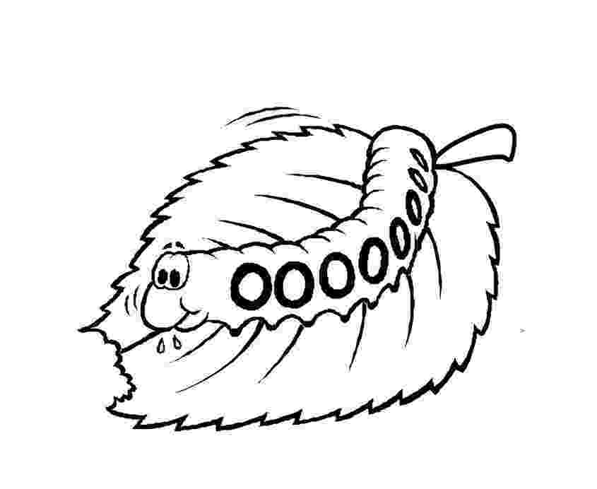 caterpillar for coloring free printable caterpillar coloring pages for kids coloring for caterpillar 1 5