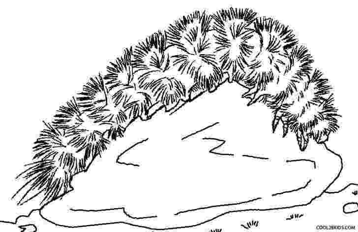 caterpillar for coloring printable caterpillar coloring pages for kids cool2bkids coloring caterpillar for 1 1