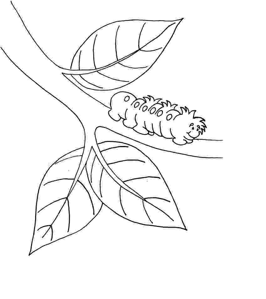 caterpillar for coloring very hungry caterpillar coloring pages to download and for coloring caterpillar