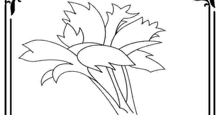 celery coloring page celery coloring pictures realistic coloring pages page celery coloring