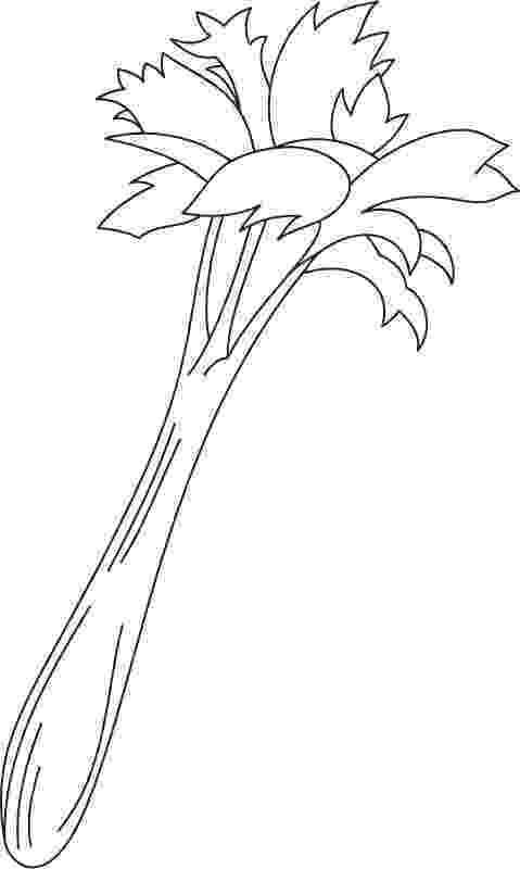 celery coloring page growing celery coloring page download free growing celery coloring page