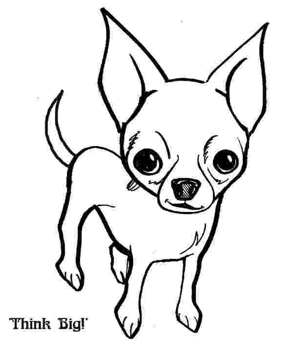 chihuahua pictures to print chihuahua coloring pages hellokidscom chihuahua print pictures to