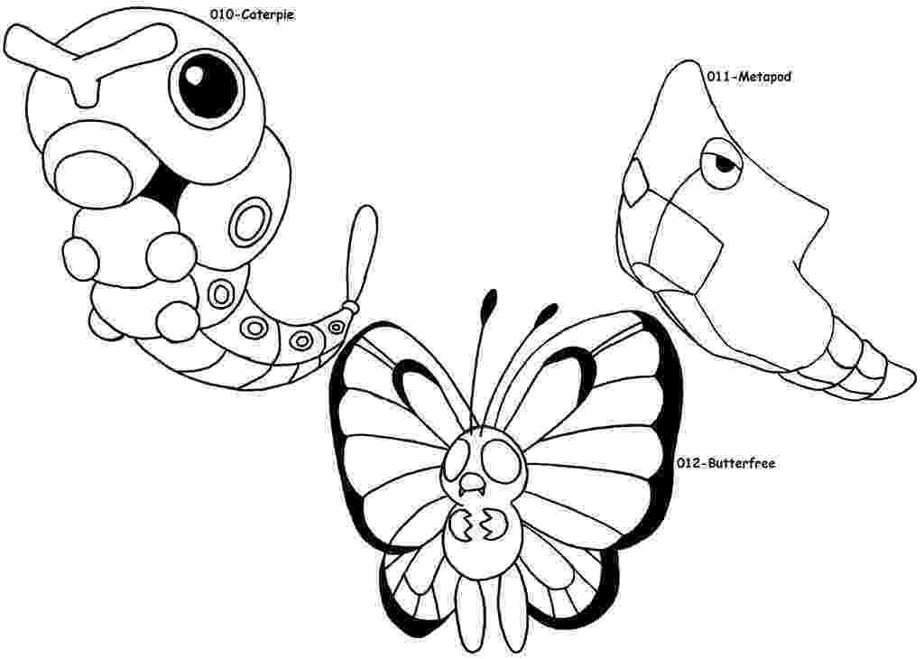 chimchar pokemon coloring pages pokemon coloring pages chimchar pages coloring pokemon