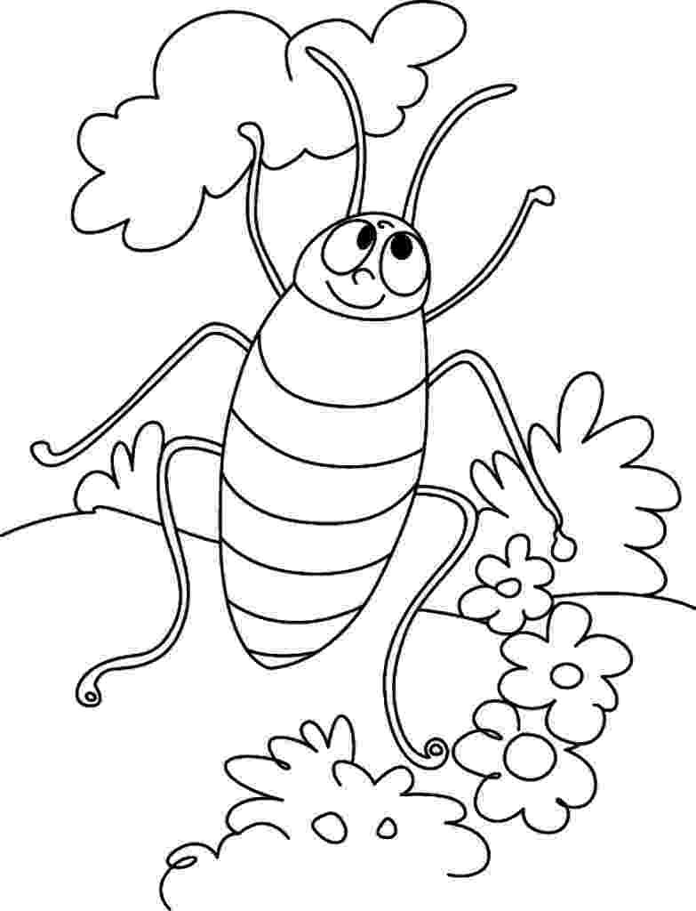 cockroach coloring page free printable cockroach coloring pages for kids page cockroach coloring
