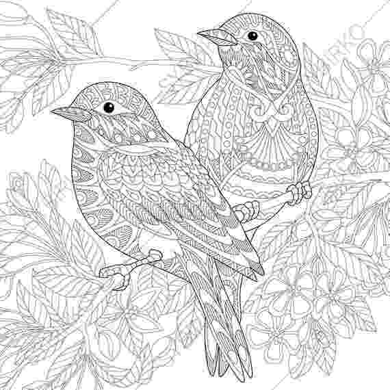 coloring bird adult coloring pages sparrow birds zentangle doodle coloring coloring bird
