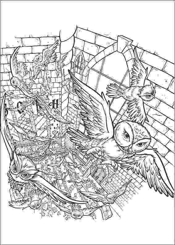 coloring book harry potter harry potter coloring pages coloringpages1001com potter harry coloring book