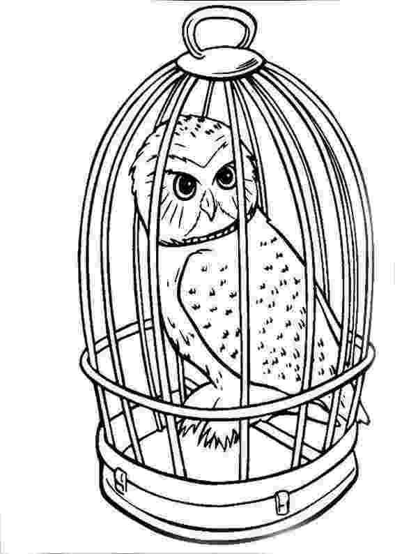 coloring book harry potter harry potter coloring pages to download and print for free coloring harry book potter