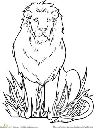 coloring book lion lion worksheet educationcom book coloring lion