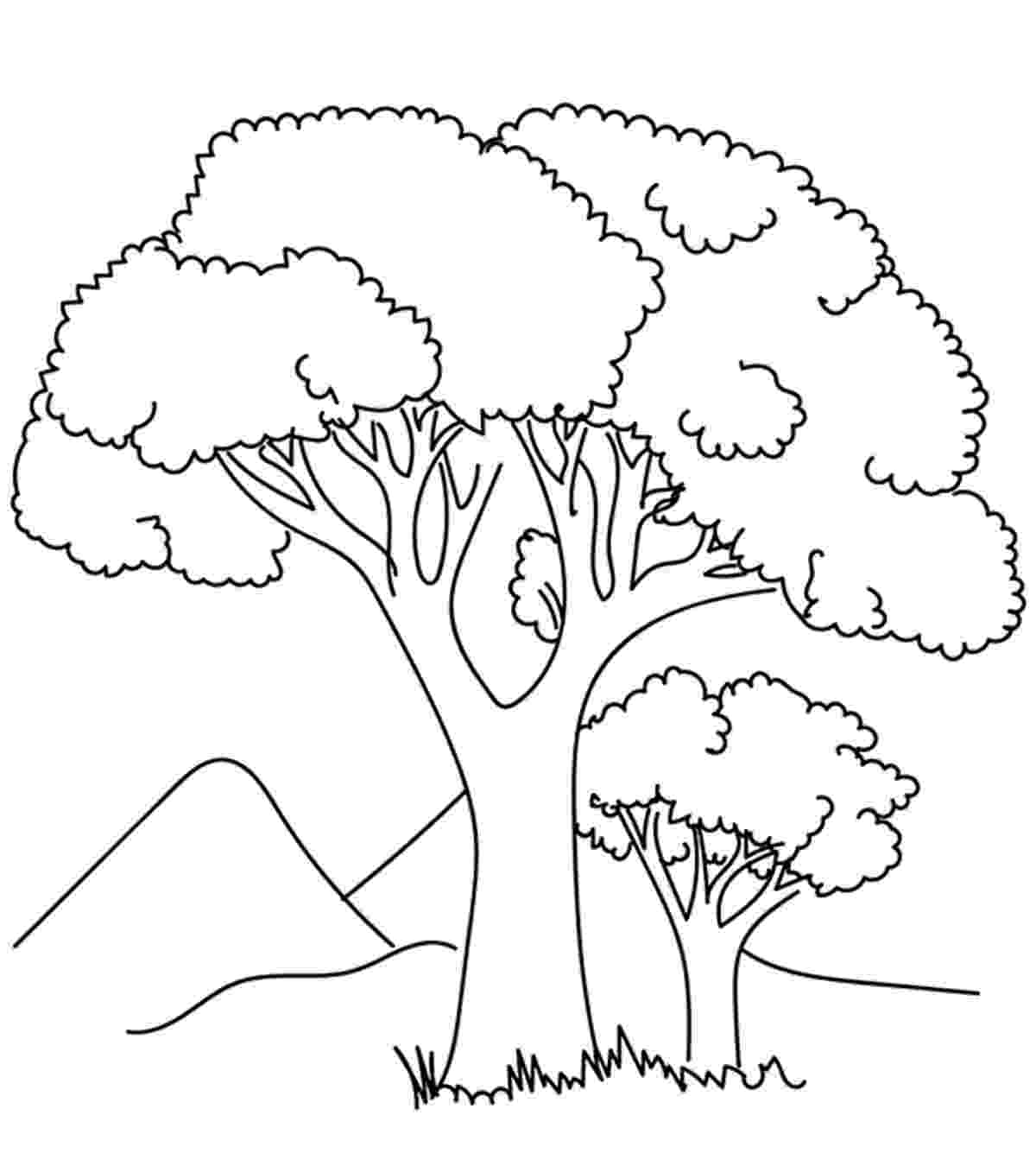 coloring book pages trees free printable tree coloring pages for kids cool2bkids book coloring trees pages
