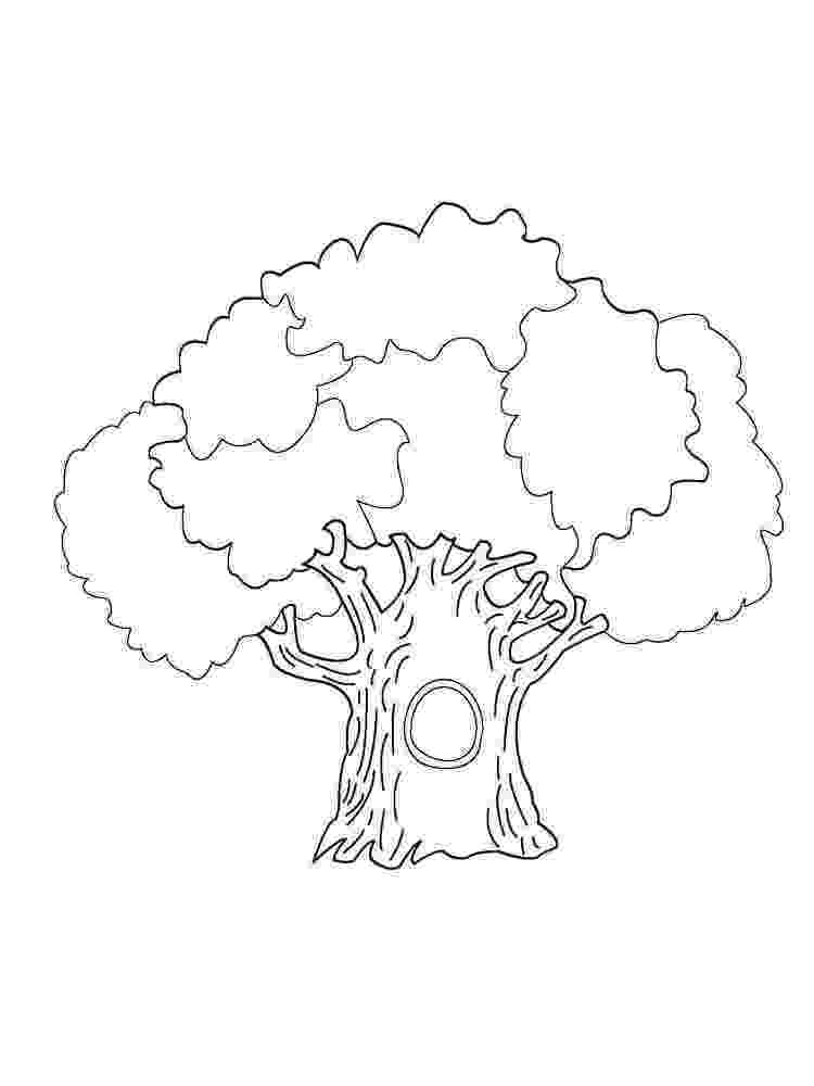 coloring book pages trees trees coloring pages download and print trees coloring pages book coloring trees pages
