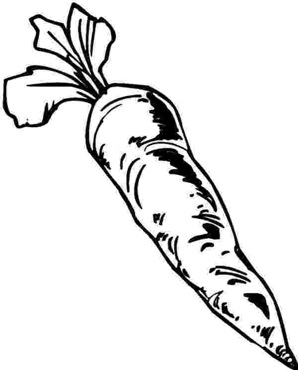 coloring carrot in carrot colouring pages page 2 clipartsco coloring carrot