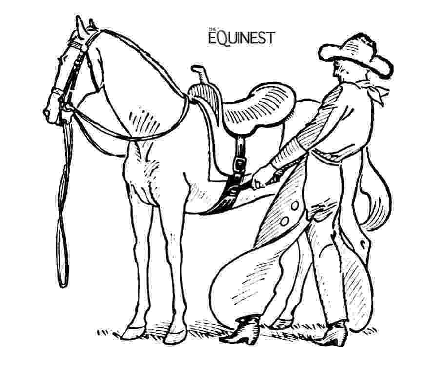 coloring horses horse coloring pages 1001 coloringpages animals horses coloring