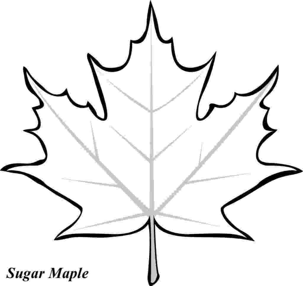 coloring leaves free printable leaf coloring pages for kids coloring leaves 1 1