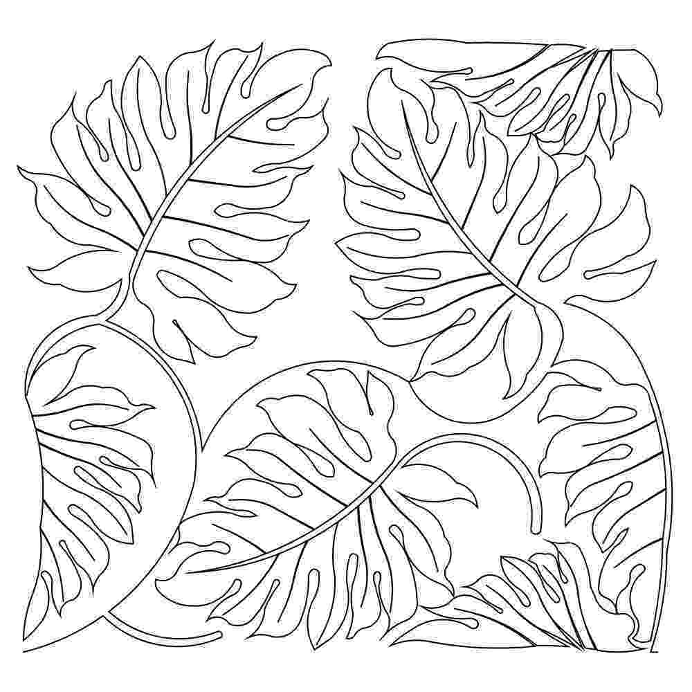 coloring leaves free printable leaf coloring pages for kids cool2bkids coloring leaves