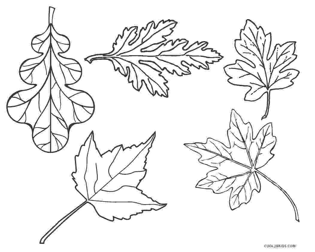 coloring leaves free printable leaf coloring pages for kids leaves coloring 1 1