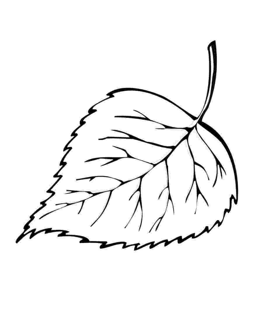 coloring leaves leaf coloring page 13 printable coloring page for kids and coloring leaves