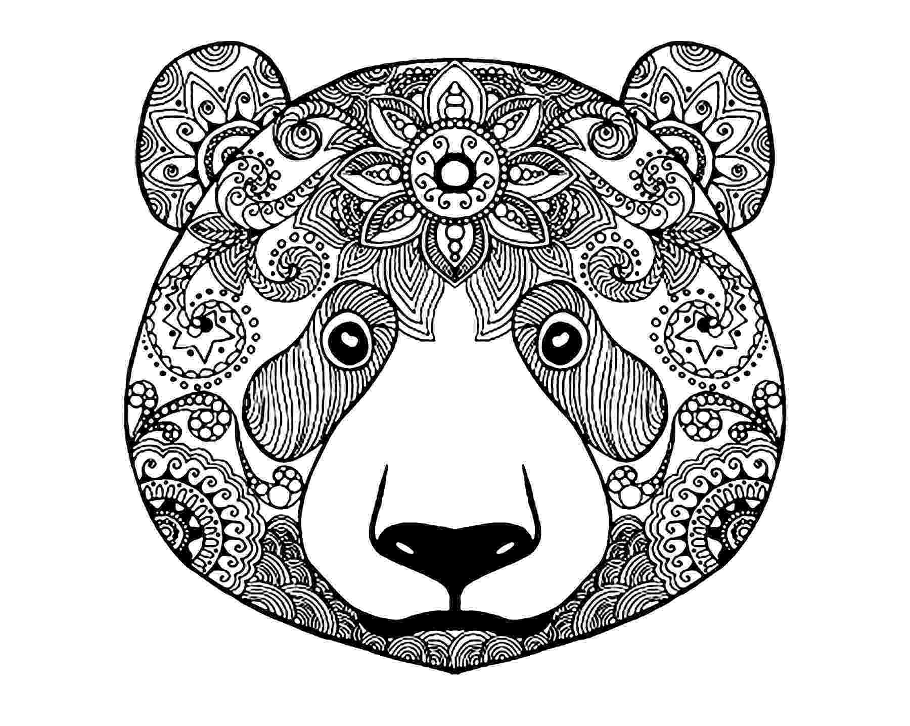 coloring page bear bear 2 bears adult coloring pages bear page coloring