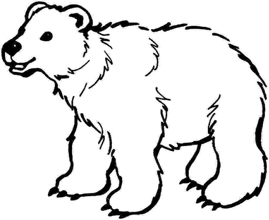 coloring page bear brown bear coloring pages download and print for free coloring page bear