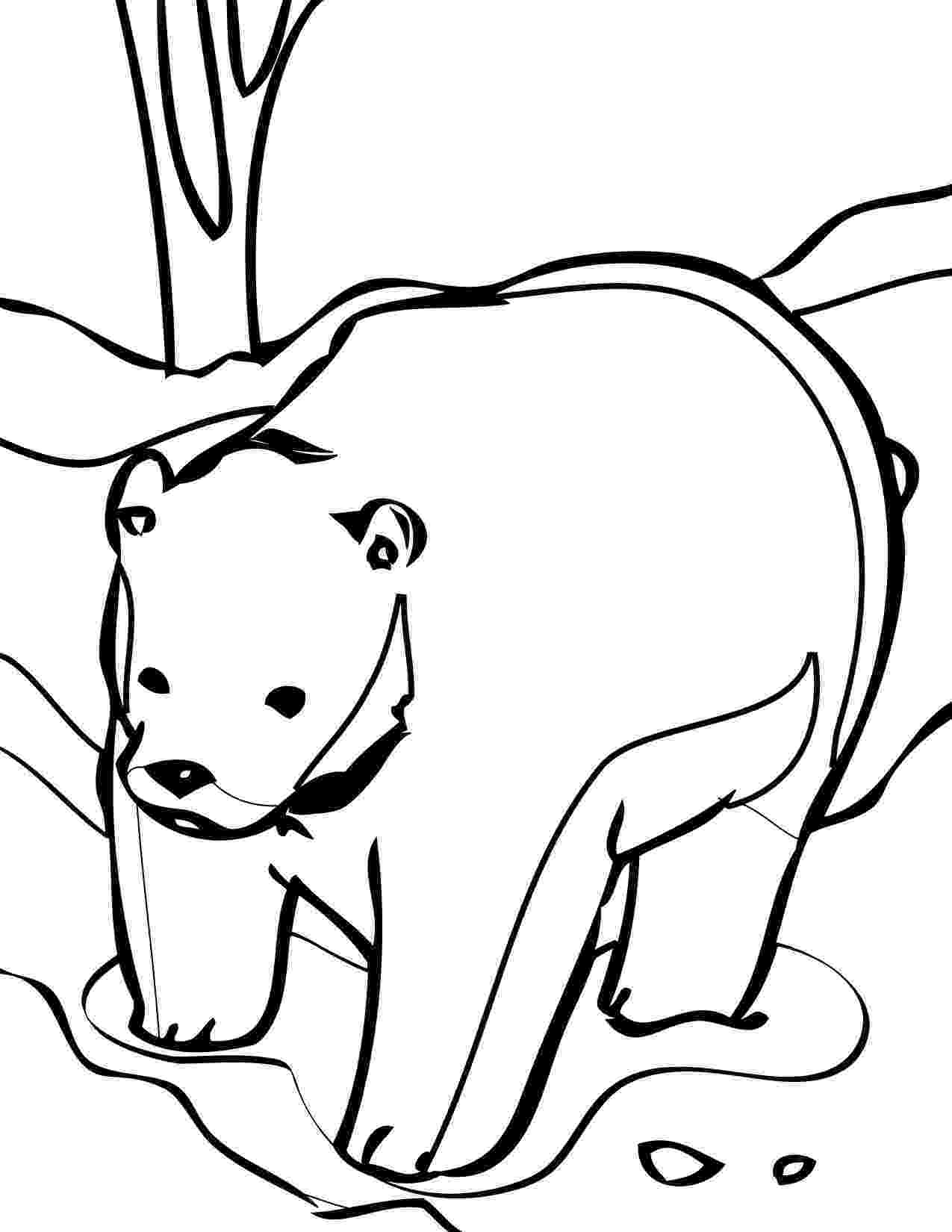 coloring page bear cute bear coloring pages bear page coloring