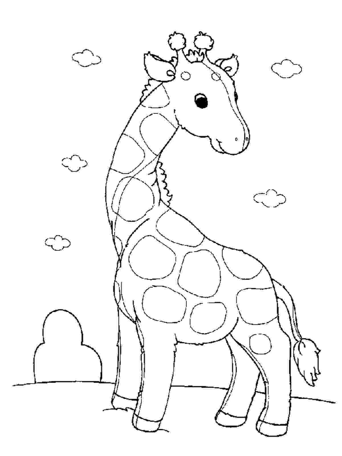 coloring page giraffe april39s baby has arrived and here is the video hip page giraffe coloring
