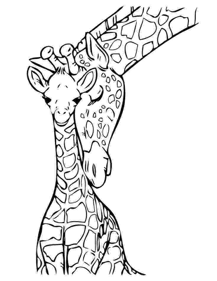 coloring page giraffe baby giraffe coloring page free printable coloring pages giraffe page coloring