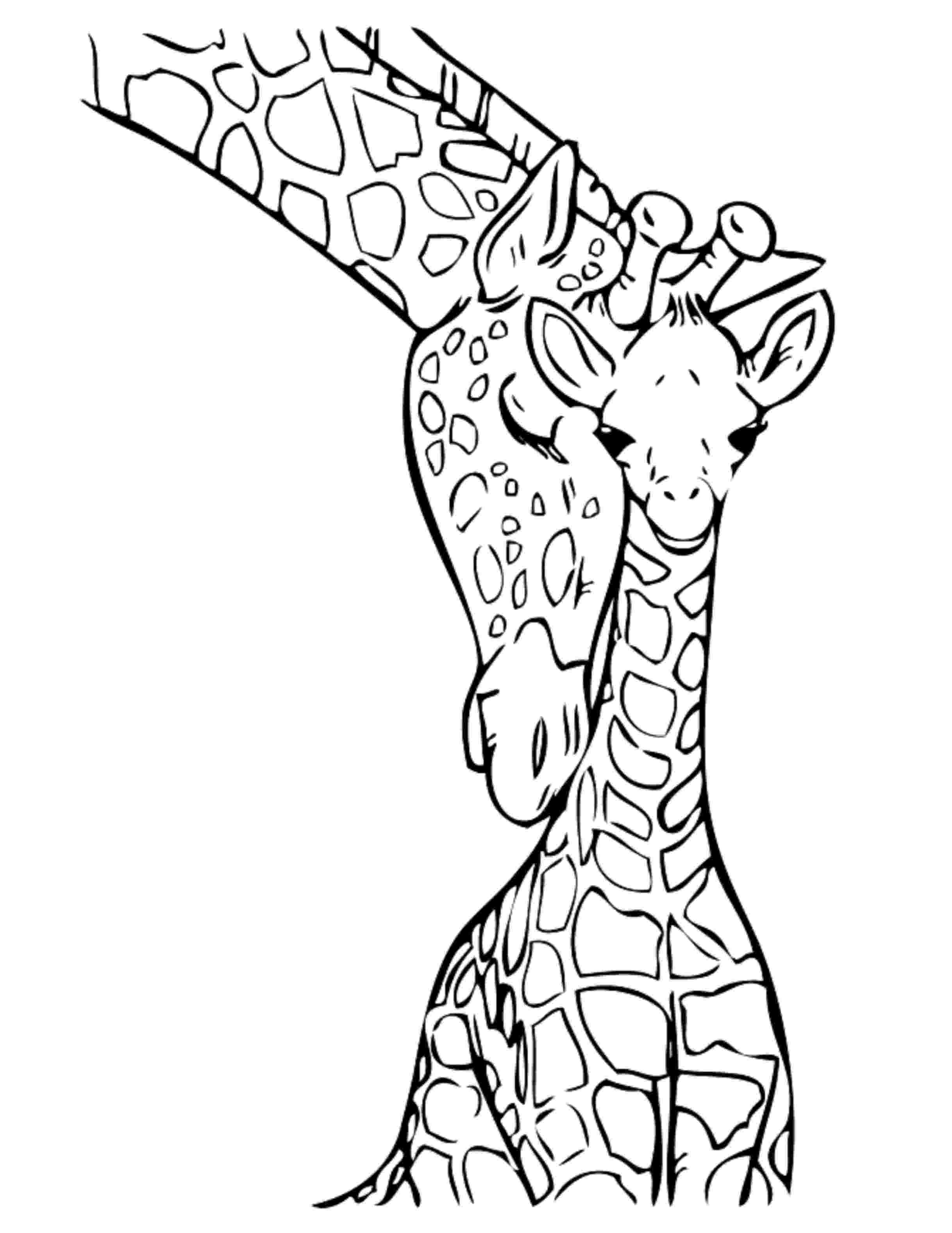 coloring page giraffe print download giraffe coloring pages for kids to have fun giraffe coloring page