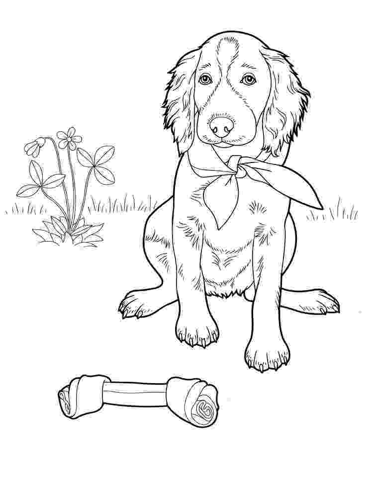 coloring page of a dog puppy coloring pages getcoloringpagescom dog page coloring a of