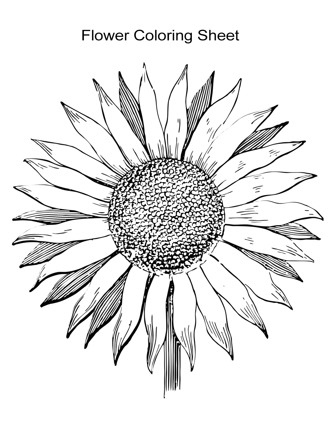 coloring page of flower flower with many petals flowers adult coloring pages coloring of flower page