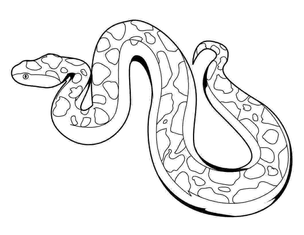 coloring page snake lena loves the king cobra snake snake page coloring
