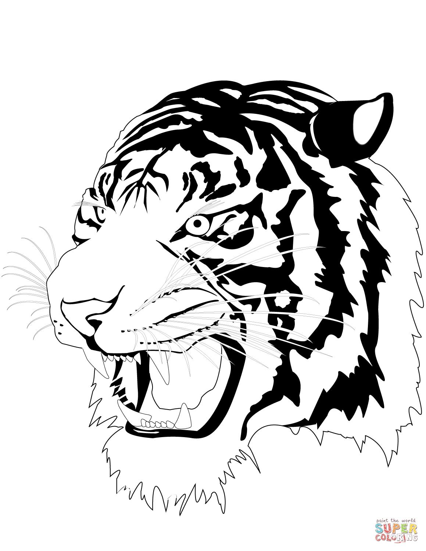 coloring page tiger sumatran tiger laying down coloring page free printable tiger coloring page
