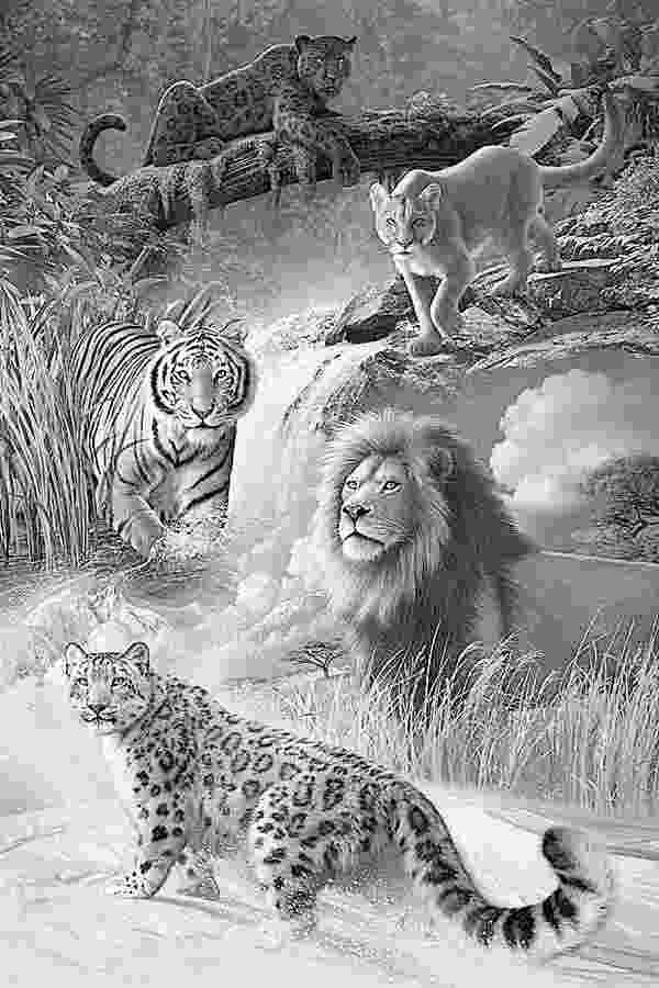 coloring pages animals realistic free printable realistic animal coloring pages just pages coloring animals realistic