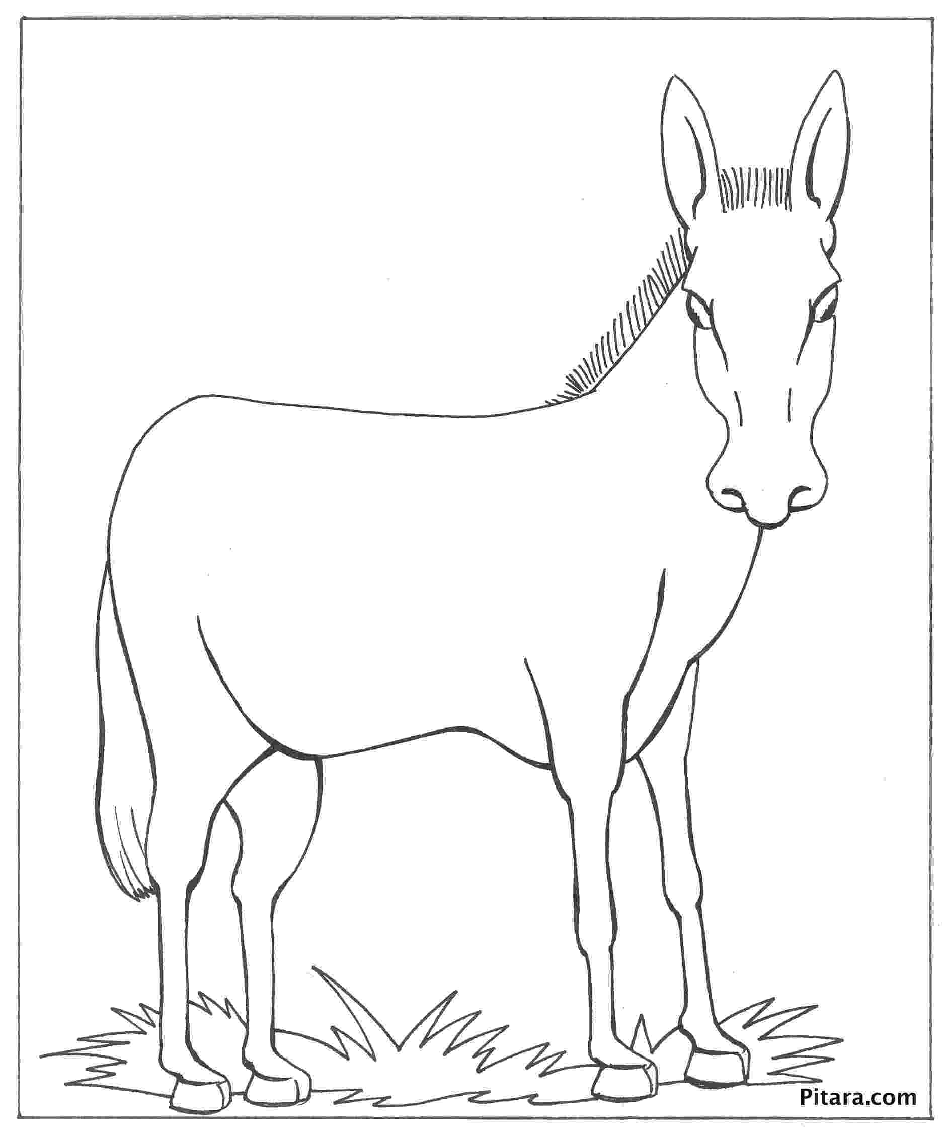 coloring pages donkey 305 best images about color horses donkeys mules and donkey coloring pages