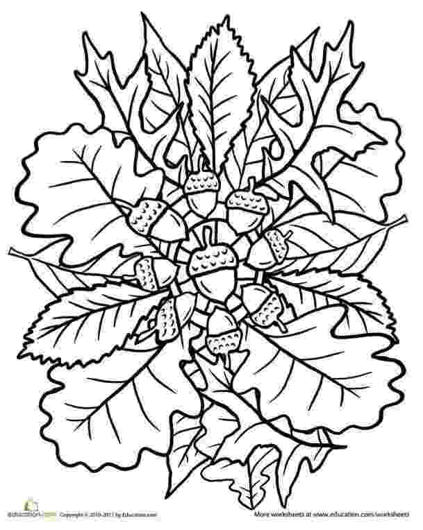coloring pages fall leaves fall leaves coloring pages 2016 leaves coloring pages fall