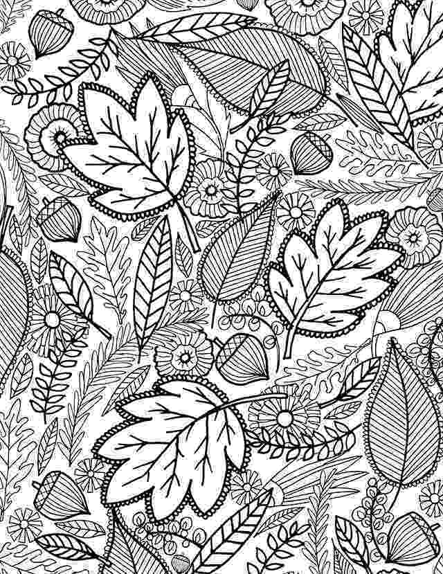 coloring pages fall leaves transmissionpress fall leaves coloring page fall pages leaves coloring