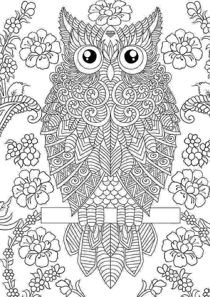 coloring pages for adults with owls Épinglé par sandie edwards sur samantha coloriage pages for owls adults coloring with