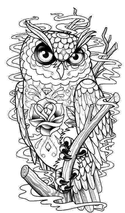 coloring pages for adults with owls 891 best owl colouring images on pinterest coloring for pages coloring owls adults with