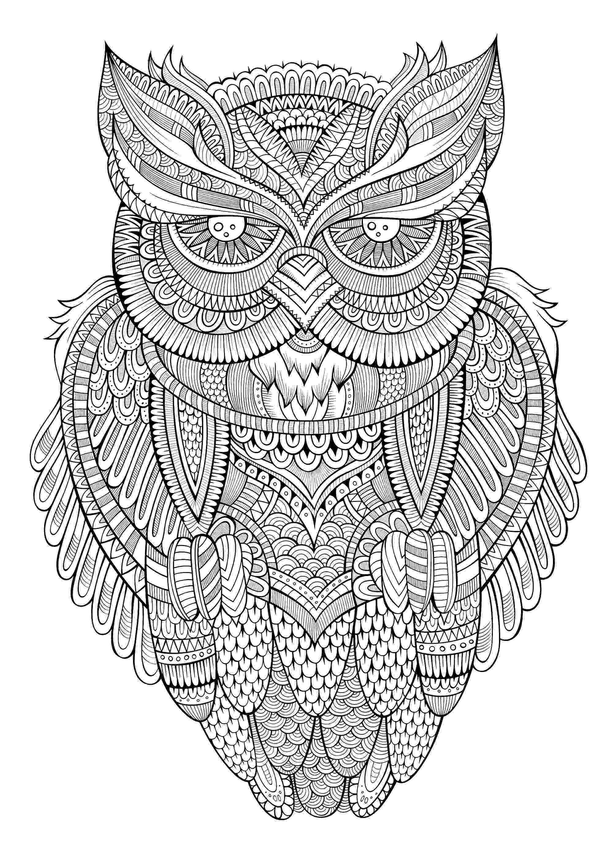 coloring pages for adults with owls adult owl coloring page getcoloringpagescom with coloring pages adults for owls